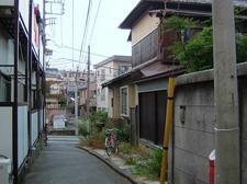 50NiiyamaAogiriDSCF2506.JPG
