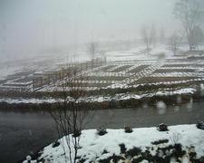 Snow50DSCF1579.JPG